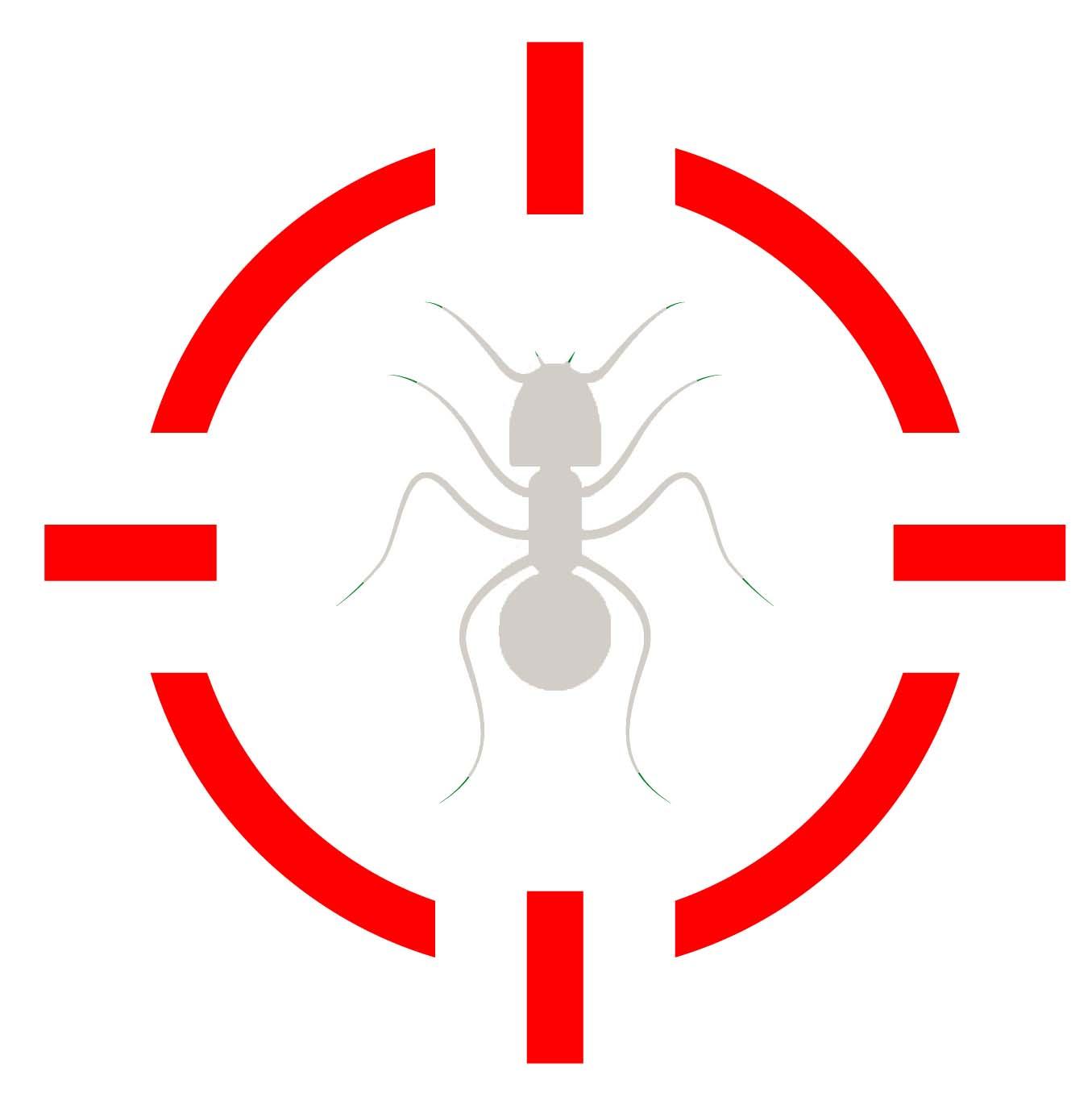 Pest Control Long Island, NY_Ants