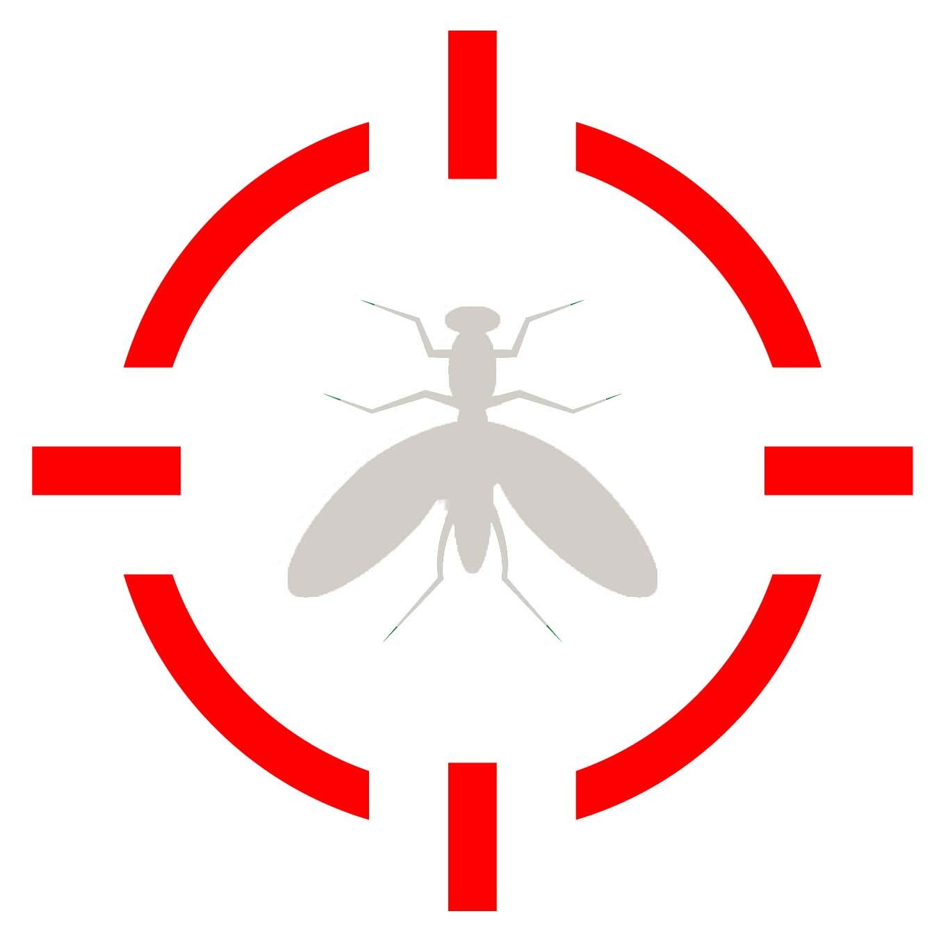 Pest Control Long Island, NY_Termites