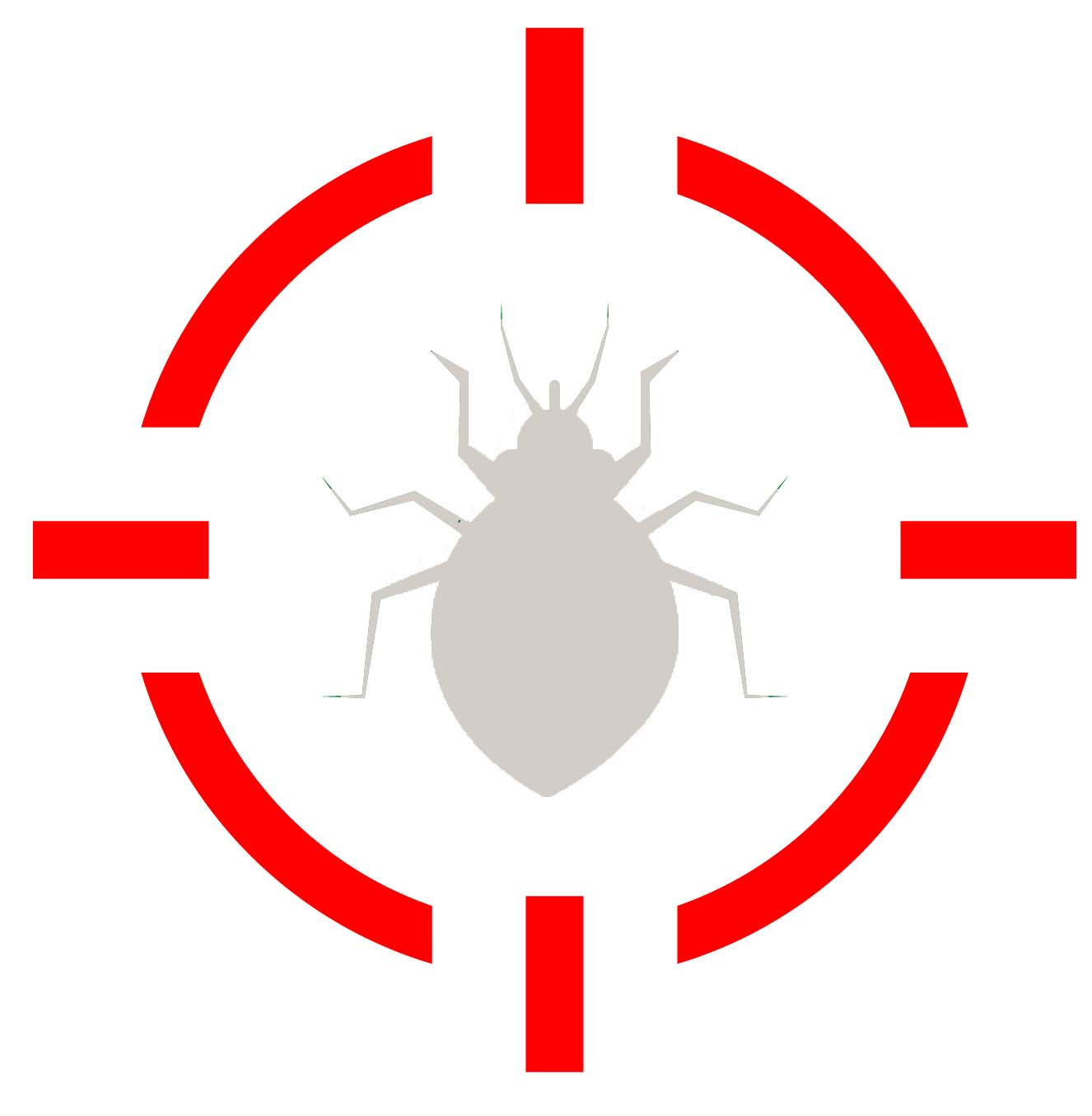 Pest Control Long Island, NY_Bed bugs