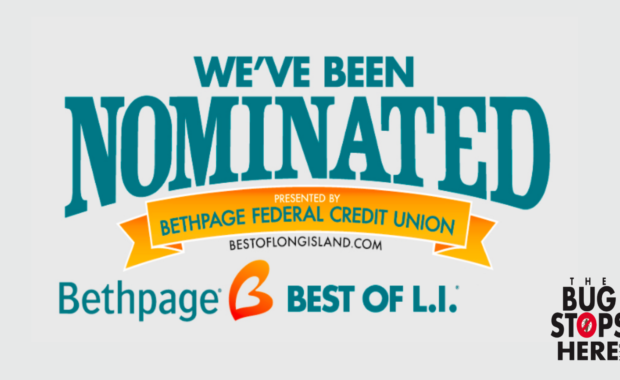 The Bug Stops Here Nominated as the Best Exterminator in the 2021 Bethpage Best of Long Island